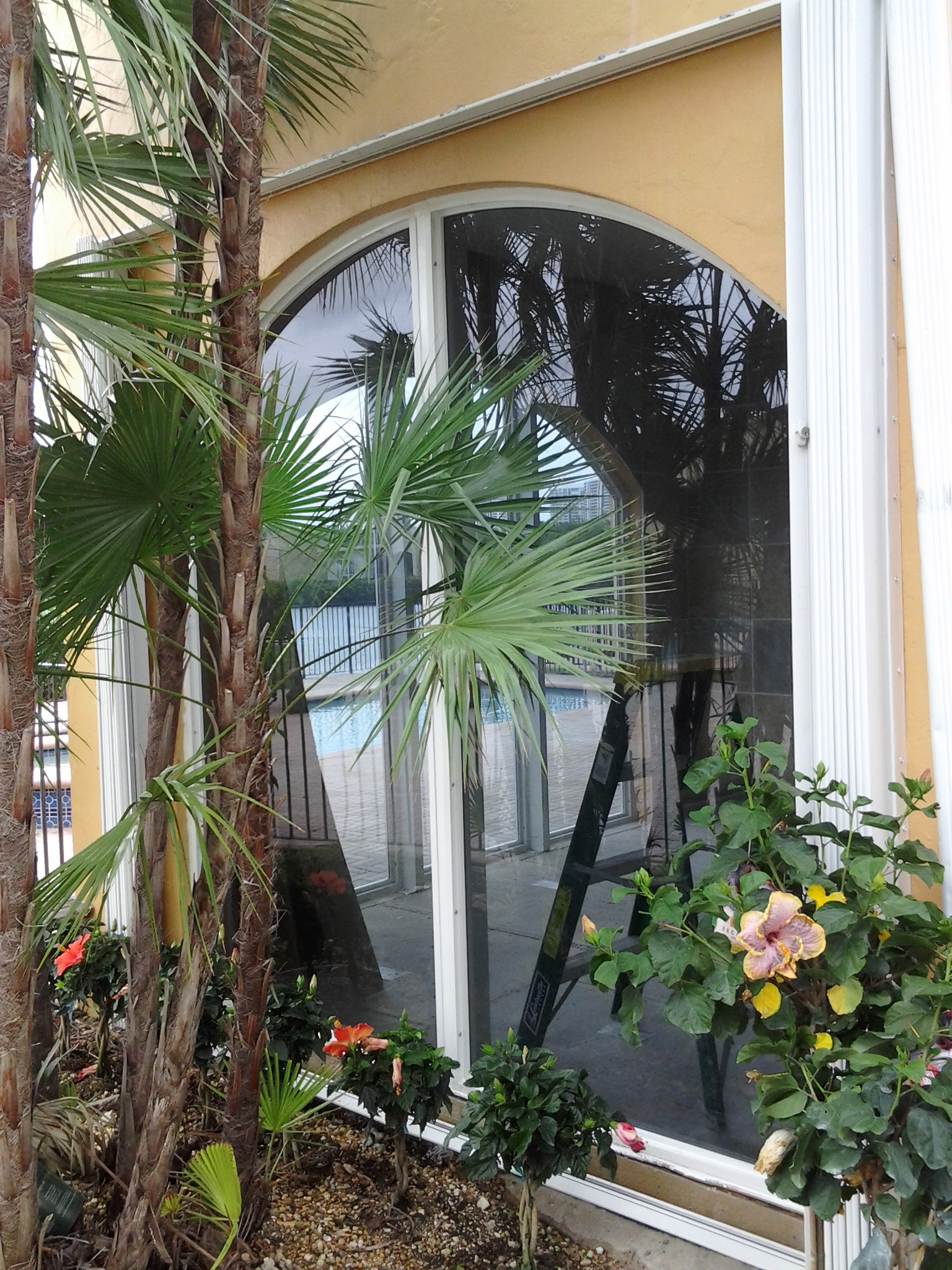 Miami windows repair and installation home window for Window installation orlando